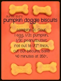 Pumpkin and Peanut Butter  Dog Biscuits~ just three ingredients!