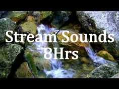 "of Stream Sounds ""Sleep Sounds"" ""Natural Sounds"" (+playlist) Sound Of Rain, Rain Sounds, Ethereal Music, Space Music, Nature Gif, University Life, Nature Sounds, Meditation Music, Relaxing Music"