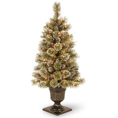 Martha Stewart Living 4 ft. Pre-Lit Potted Sparkling Pine Artificial... (80 CAD) ❤ liked on Polyvore featuring christmas и christmas tree