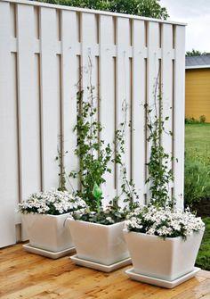 DIY Wire Trellis | via Chez Larsson blog | House & Home