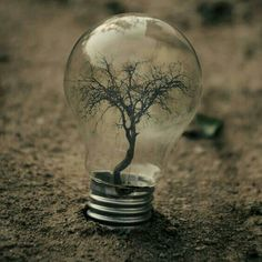 Photoshop photo manipulation techniques can help you create surreal looking photos. 30 Creative Examples of Photo Manipulation Light Bulb Art, Iran Pictures, Demotivational Posters, Les Sentiments, Photo Manipulation, Find Image, Art Photography, Instagram, Ideas