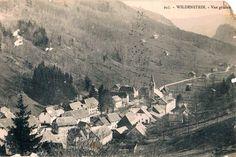 wildenstein 1916