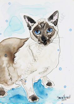 CUSTOM MIXED MEDIA SKETCHES / PORTRAITS / PETS / RESCUED CATS / Blue Point Siamese by Shaina Kay Stinard - Artist. Making your photos a work of art! www.shainastinardartist.com. #SecondChances100RescuedPetPortraitsin100Days