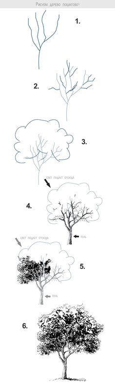 40 Easy Step By Step Art Drawings To Practice Comment dessiner un arbre (un feuillu) ? Drawing Techniques, Drawing Tips, Drawing Sketches, Drawing Ideas, Drawing Art, Drawing Lessons, Sketch Ideas, Nature Drawing, Trees Drawing Tutorial