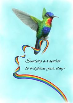 greeting card featuring the fiery-throated hummingbird of Central America carrying a rainbow to brighten your day! Brighten Your Day, Central America, Designs To Draw, Colored Pencils, Things That Bounce, Whimsical, Greeting Cards, Rainbow, Hummingbird