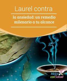 Laurel contra la ansiedad: un remedio milenario a tu alcance  El laurel confiere sabor a nuestros platos, calma a nuestra mente y salud a nuestro organismo. ¡Descubre cómo puede ayudarte a combatir la ansiedad!