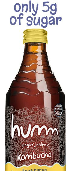 10 Best Kombucha Brands To Drink, According Nutritionists Best Kombucha, Kombucha Brands, Organic Raw Kombucha, Fermented Tea, Green Algae, Gram Of Sugar, Alcohol Content, Pineapple Coconut