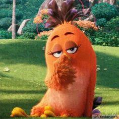 Angry Birds (Orange) – Kiss