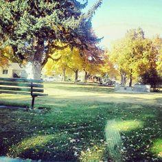 Fall Missoula Montana...so pretty!