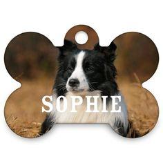 Photo Gallery Dogbone Pet Tag Multicolor