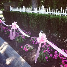 Pink ribbons lined the walkways at the Vera Bradley Foundation for Breast Cancer Classic Women's Golf and Tennis Tournament.