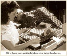 Cigar Women in Tampa