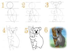 tuto : comment dessiner un koala en 6 étapes Trait Vertical, Snoopy, Fictional Characters, Art, Color Pencil Picture, Pencil Drawings, Easy Drawing Tutorial, Baby Koala, Learn To Draw