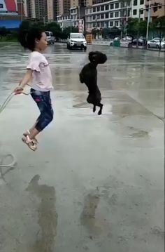 Funny Dogs Trolling Babies and Kids - Cute Dog and Baby Best Friend Dog And Baby Take A Bath Funny Time Together - Cute Dogs and Babies Compilation . Cute Funny Animals, Cute Baby Animals, Funny Dogs, Animals And Pets, Fluffy Animals, Cute Animal Videos, Funny Animal Pictures, Animal Pics, I Love Dogs