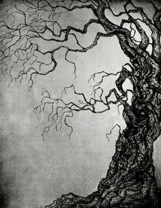 Tree ORIGINAL ETCHING Intaglio print LIMITED Edition by Zoe Stewart (17.4cm x 22.2cm)