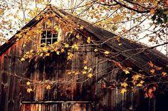 Beautiful fall...