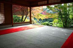 京都 妙心寺退蔵院