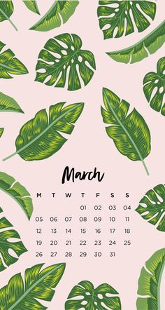 emma's studyblr — March Tropical Leaf Phone Wallpapers Here are four...