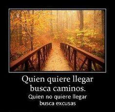 Quien quiere llegar encuentra el camino #caminos #excusas #exito #oportunidad