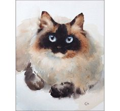 Ragdoll Cat Art Print by Maria Stezhko. All prints are professionally printed, packaged, and shipped within 3 - 4 business days. Watercolor Cat, Watercolor Animals, Watercolor Paintings, Original Paintings, Watercolors, Cat Art Print, Cat Drawing, Art Plastique, Animal Paintings