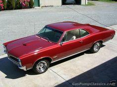 1966 GTO  www.sexyskin.ca
