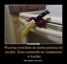 Wczoraj wróciłem do domu później niż zwykle. Żona zostawiła mi wiadomość  w kuchni – Nie spałem do rana... Polish Memes, Wtf Funny, Best Memes, Have Fun, Cool Stuff, Elf, Pikachu, Anime, Decor