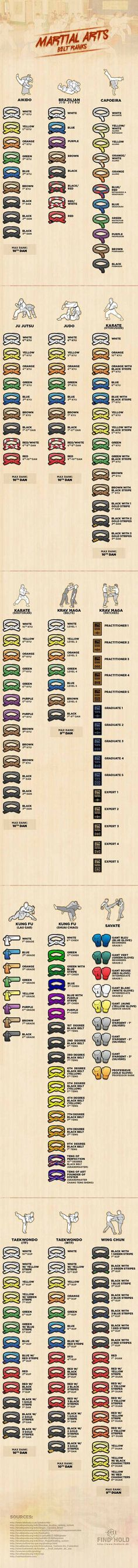 15 Martial Arts Belt Rankings Infographic.