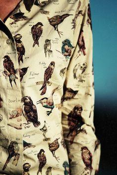 Estampas criativas: Pássaros / Imagem: Pinterest - Reprodução