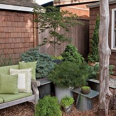 Spectacular Container Gardens: Use textural leaves for a more modern look. An assortment of plants in shades of green anchors this backyard corner and adds depth in the small space. Tour this Small Cottage Garden Backyard Garden Design, Garden Landscaping, Backyard Plants, Modern Backyard, Large Backyard, Landscaping Ideas, Container Plants, Container Gardening, Container Flowers
