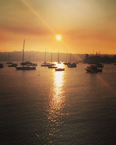 Smoky sunrise this morning  #Sydney #travel #sunrise