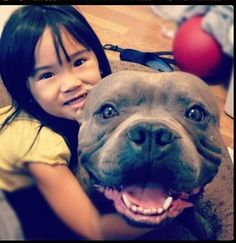 pictures of pit bulls and kids - Google Search