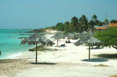Boca Catalina Beach in Aruba : Aruba Beach