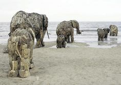Elephant Sculptures made from driftwood by South African artist Andries Botha. A team of 10 African artists put together this giant family of elephants in a public installation piece titled You Can Buy My Heart and My Soul.