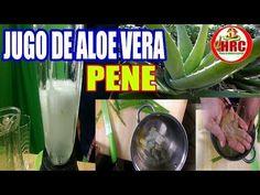 Jugo De Aloe Vera O Sabila Para El Pene Como Preparar Efectos Del Aloe Vera O Sabila En  El Pene - YouTube