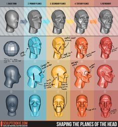 Brilliant Blender, Unity, and Concept Art tutorials for animation artists and game developers. Blender 3d, Blender Models, Beauty Blender, Blender Salsa, Portable Blender, Blender Bottle, Human Reference, Figure Drawing Reference, Anatomy Reference