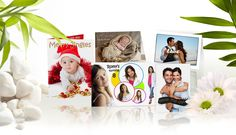 Greeting Cards from NuShots