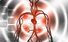 Insuffisance cardiaque Traitements symptomatique, bilan et traitement de fond
