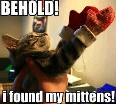 3 little kittens have lost their mittens. Funny Cat Memes, Haha Funny, Funny Cute, Funny Shit, Funny Stuff, Cat Stuff, Funny Things, Cat Things, Crazy Funny