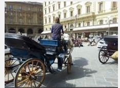 2015 Passeggiate in carrozza- Horse-Drawn Carriage Tours, on Saturdays, July 18-Sept. 30, , 8-11:30 p.m.; in October, 3-8 p.m.; enjoy this unique way of seeing the most beautiful sites in Vicenza; the 20 minute tours depart and return to Piazza Biade; the cost is €15 for a maximum of four people at a time.
