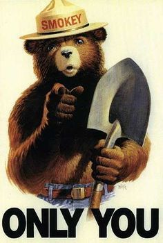 "1960's Smokey The Bear...""Only You Can Prevent Forest Fires"""