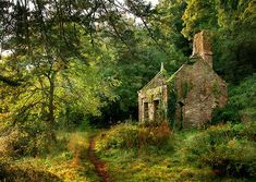 Old and abandoned house in the English Countryside Old Buildings, Abandoned Buildings, Abandoned Places, Abandoned Castles, Haunted Places, Photo Post Mortem, Famous Castles, Abandoned Mansions, English Countryside