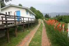 Camino de entrada a las Cabañas Descanso de Las Piedras - Tafí del Valle