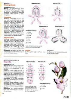 Flower with chart