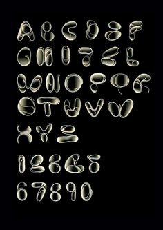 oooooh! it's like a scanned side typeface/font thing. so pretty and amazing and stuff