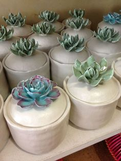 Succulent ceramic jars #anthrofav