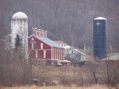 Somerset Co. PA.