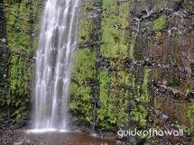Waimoku Falls is at the head of the Pipiwai Trail, above Seven Sacred Pools. The hike to Waimoku Falls passes the 185 foot Makahiku Falls (which is also beautiful) at about half a mile into the trail.    The trail follows the Pipiwai Stream and is one of the best hikes on Maui. It is 4 miles round-trip, gaining 650-feet in elevation. It takes 2 1/2 - 5 hours to hike, depending on how much nature loving you do. The final destination is the fantastic Waimoku Falls.