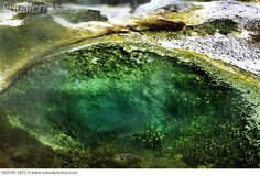 arial volcanic images | Algae in a hot spring in Yellowstone National Park, Wyoming, USA