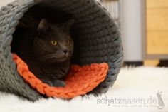 Der Katzentunnel und die 3 Sekundenregel Our latest DIY project is a cat tunnel. More precisely, a crocheted cat tunnel. How to do that and how the boys find him? Cat Empire, Cat Playground, Cat Tunnel, Cat Wallpaper, Animal Pillows, Cat Furniture, Diy Stuffed Animals, Beautiful Cats, Beautiful Pictures