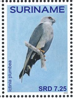 Plumbeous Kite stamps - mainly images - gallery format